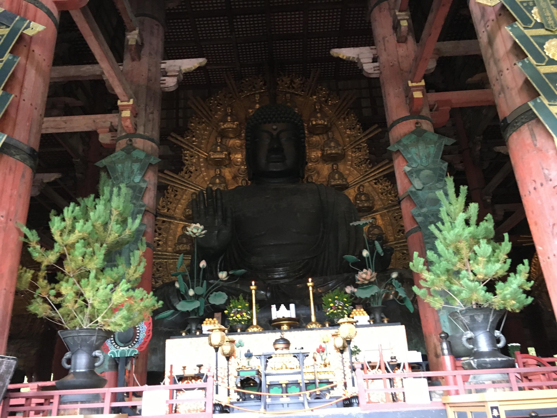 新宿歌舞伎町の美容室savianの武久 奈良の大仏を見る