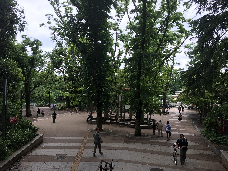新宿歌舞伎町の美容院セイヴィアンの武久禁煙&ダイエット日記的ブログ