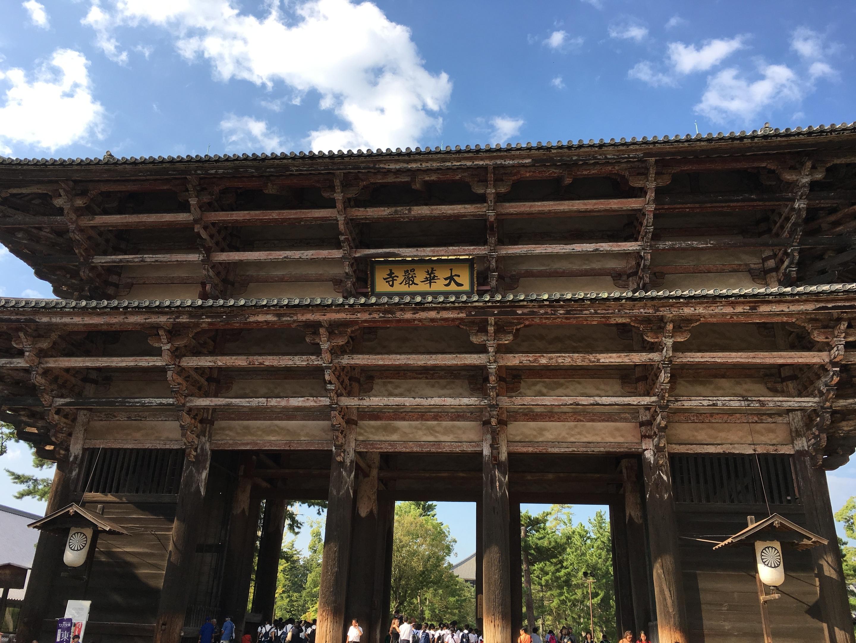新宿の美容師 武久の夏休み 奈良東大寺 鹿に囲まれる