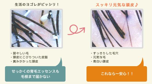 新宿歌舞伎町美容室セイヴィアン 炭酸スパ