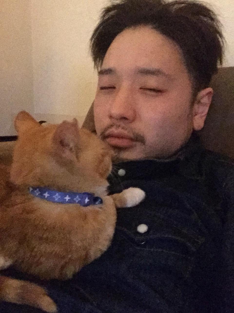 新宿の猫美容師