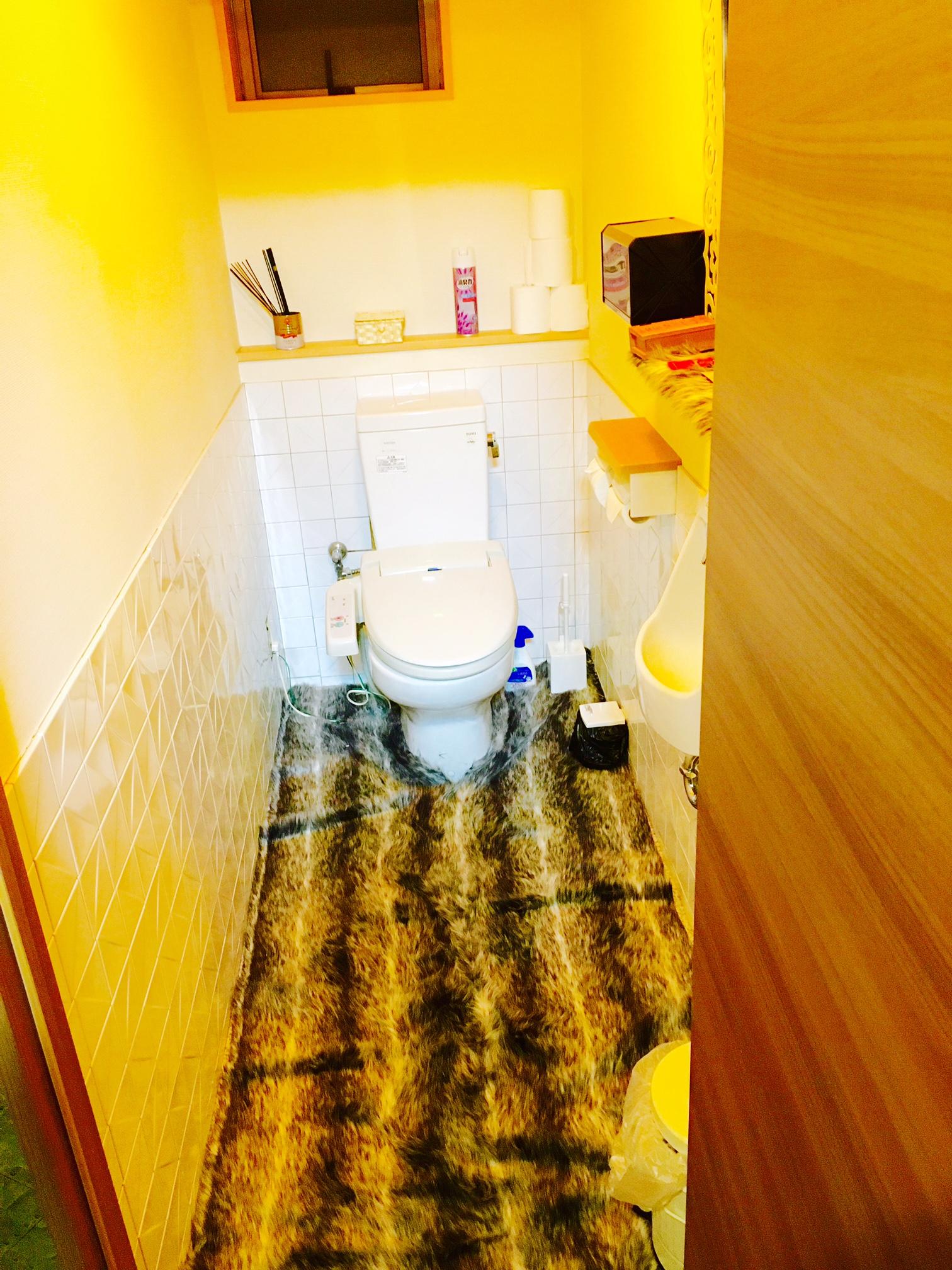 セイヴィアンの怪しいトイレ